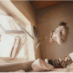 Jeremy Geddes A Perfect Vacuum